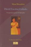 Maud Bourdois - David Escobar Galindo - Un penseur pour El Salvador.