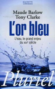 Accentsonline.fr L'or bleu - L'eau, le grand enjeu du XXIe siècle Image