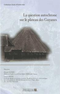 Maude Elfort et Vincent Roux - La question autochtone sur le plateau des Guyanes.