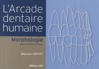 Larcade dentaire humaine - Morphologie.pdf