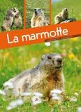 Maurice Dupérat - La marmotte.