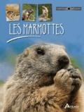 Maurice Dupérat - Les marmottes.
