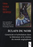 Max Duperray et Gilles Menegaldo - Eclats du noir - Généricité et hybridation dans la littérature et le cinéma du monde anglophone.