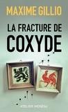 Maxime Gillio - La fracture de coxyde.