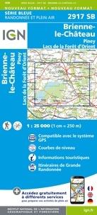 IGN - Brienne-le-Château/Piney/Lacs forêt d'orient - 1/25000.