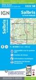 IGN - Salbris, La Ferté-Imbault - 1/25 000.