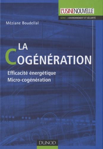 Méziane Boudellal - La cogénération.