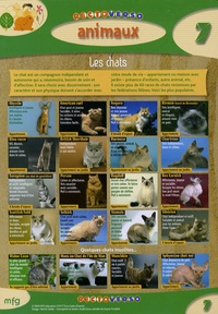 Goodtastepolice.fr Animaux : les chats Image
