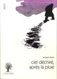 Michaël Glück - Ciel dechiré, après la pluie.
