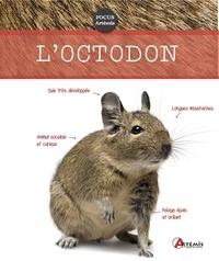 Loctodon.pdf