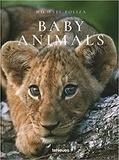 Michael Poliza - Baby animals.