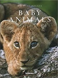 Baby animals.pdf
