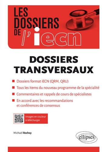 Michaël Rochoy - Dossiers transversaux.
