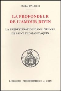 Michal Paluch - La profondeur de l'amour divin - Evolution de la doctrine de la représentation dans l'oeuvre de saint Thomas d'Aquin.