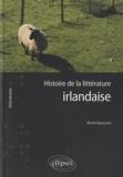 Michel Barrucand - Histoire de la littérature irlandaise.