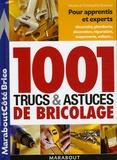 Michel Branchu et Christophe Branchu - 1001 trucs et astuces du bricolage.