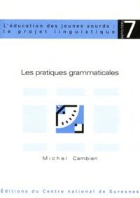 Michel Cambien - Les pratiques grammaticales.