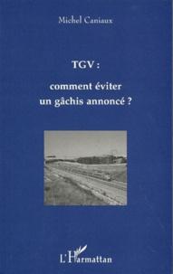Michel Caniaux - TGV - Comment éviter un gâchis annoncé ?, fourche, piques ou trident ?.