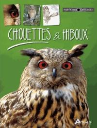 Michel Cuisin - Chouettes et hiboux.