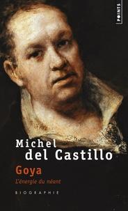 Michel del Castillo - Goya - L'énergie du néant.