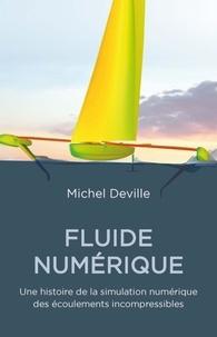 Michel Deville - Fluide numérique - Une histoire de la simulation numérique des écoulements incompressibles.