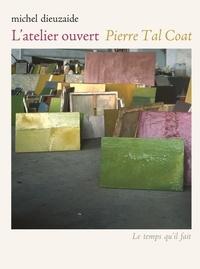 Michel Dieuzaide - L'atelier ouvert Pierre Tal Coat. 1 DVD