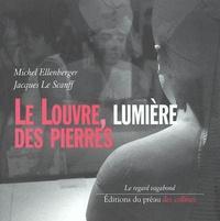 Michel Ellenberger - Le Louvre, lumière des pierres.