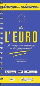 Vademecum de l'euro à l'usage des entreprises et des professionnels - Michel Gaudin |