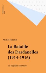 Michel Hérubel - .