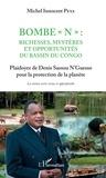 """Michel Innocent Peya - Bombe """"N"""" : Richesses, mystères et opportunités du bassin du Congo - Plaidoyer de Denis Sassou N'Guesso pour la protection de la planète."""