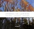 Michel Leboeuf et Alain Massicotte - Arbres en lumière.