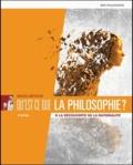 Michel Métayer - Qu'est-ce que la philosophie ? - A la découverte de la rationalité.