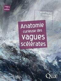 Michel Olagnon et Janette Kerr - Anatomie curieuse des vagues scélérates.