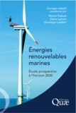 Michel Paillard et Denis Lacroix - Energies renouvelables marines - Etude prospective à l'horizon 2030.