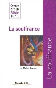 Michel Quesnel - Ce que dit la bible sur... la souffrance.