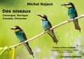 Michel Rajaut - Des oiseaux - Camargue, Garrigue, Causses, Cévennes.