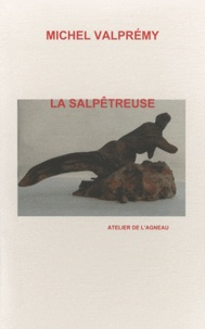 Michel Valprémy - La salpêtreuse.