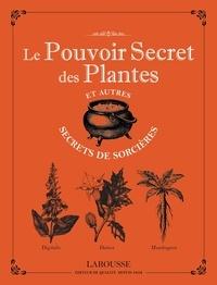Michel Viard - Le pouvoir secret des plantes et autres secrets de sorcières.