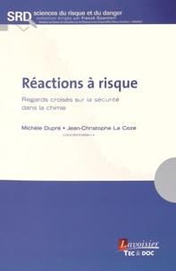 Michèle Dupré et Jean-Christophe Le Coze - Réactions à risque - Regards croisés sur la sécurité dans la chimie.