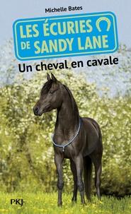 Deedr.fr Les écuries de Sandy Lane Tome 7 Image