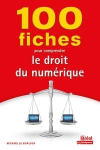 Mickaël Le Borloch - 100 fiches pour comprendre le droit numérique.