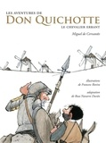 Miguel De CERVANTES SAAVEDRA et Rosa Navarro Duran - Les aventures de Don Quichotte - le chevalier errant.