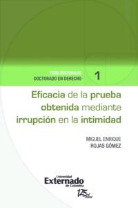 Miguel Enrique Rojas Gómez - Eficacia de la prueba obtenida mediante irrupción en la intimidad.