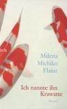Milena Michiko Flasar - Ich Nannte Ihn Krawatte.