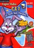 Mindscape - Lapin malin CE1 le défi des pirates - CD-ROM.
