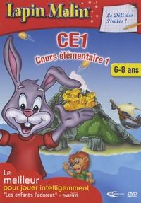 Mindscape entertainment - Lapin Malin, le défi des pirates CE1 - DVD ROM.
