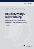 Mobiliarzwangsvollstreckung - Vollstreckung in das bewegliche Vermögen - von Anfang an richtig.