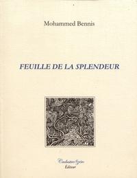 Mohammed Bennis - Feuille de la splendeur.