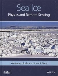 Sea Ice - Physics and Remote Sensing.pdf