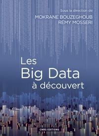 Mokrane Bouzeghoub et Rémy Mosseri - Les Big Data à découvert.
